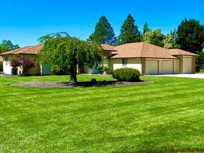Frontyard Cut Grass